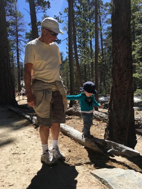 Walking logs
