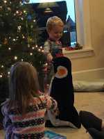 Hanson Loves Penguins