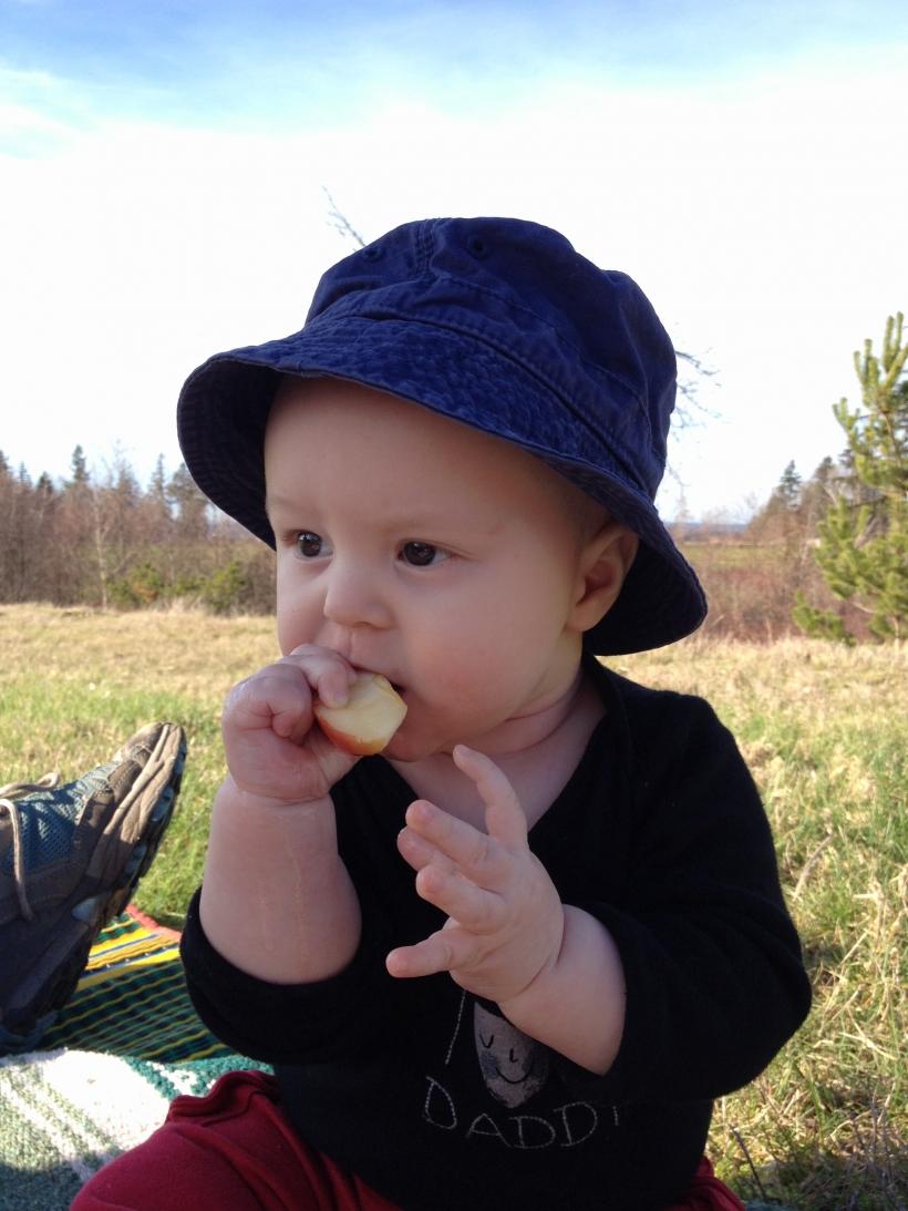 HANSON eat APPLE