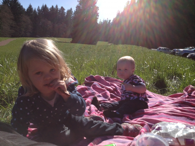 Another Weekend Picnic